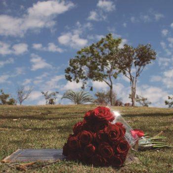 Alunos do Senac Campinas realizam exposição de fotos no cemitério Flamboyant em homenagem ao Dia de Finados